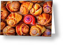 Red Snail Shell Greeting Card