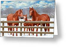 Red Sorrel Quarter Horses In Snow Greeting Card by Crista Forest