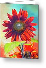 Red Sunflowers At Sundown Greeting Card
