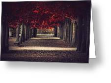 Red Surreal Path  Greeting Card