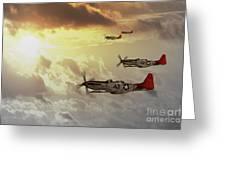 Red Tails Greeting Card by J Biggadike