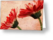 Red Texture 2 Greeting Card