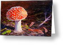 Red Toadstool Greeting Card