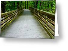 Red Top Mountain Bridge Greeting Card