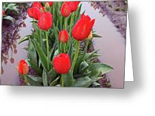 Red Tulip Row Greeting Card