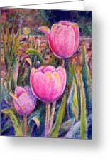 Red Tulip Trio Greeting Card