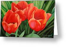 Red Tulip Trio Greeting Card