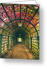 Red Tunnel Greeting Card