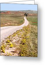 Red Valley Road Greeting Card