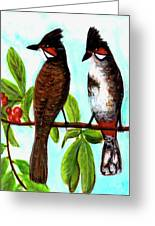 Red-whiskered Bulbul Bird, #246 Greeting Card