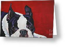 Red White And Black Greeting Card