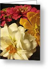 Red White And Yellow Zinnias Greeting Card