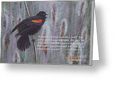 Red Wing Blackbird Greeting Card