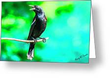Red Wing Blackbird Perching And Singing Greeting Card
