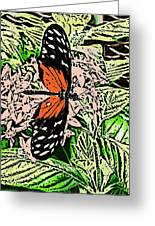 Red Winged Butterfly Greeting Card