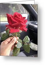 Red Winter Rose Greeting Card