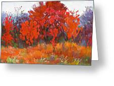 Red Woods Painting Greeting Card