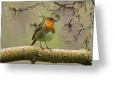 Redbreast Bird Greeting Card