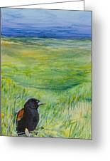 Redwing Blackbird Greeting Card by Michele Hollister - for Nancy Asbell