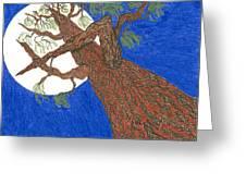 Redwood Tree Greeting Card