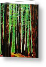 Redwoods Majestic 2 Greeting Card