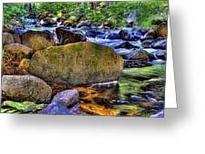 Reeder Creek From Under The Bridge Greeting Card