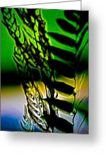 Reeds And Ferns Greeting Card