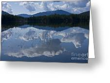 Reeds And Reflection Greeting Card