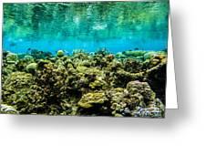 Reef At Ahnd Atoll Greeting Card