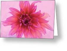 Refined Charming Balance Greeting Card