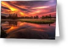 Reflected Reality Greeting Card