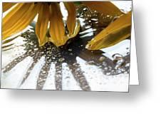 Reflected Yellow Petals Greeting Card