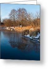 Reflecting In Threes - Three Trees By The Lake Greeting Card