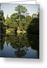 Reflecting On A Garden Greeting Card