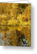 Reflecting On Autumn Leaves Greeting Card
