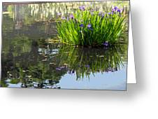 Reflecting Pond Greeting Card