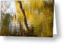 Fall Reflections 3 On Jamaica Pond Greeting Card