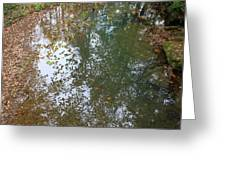 Reflection In Stream Greeting Card
