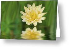 Reflection In Yellow Greeting Card