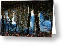 Reflection 3 Greeting Card