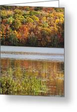 Reflection Of Autumn Colors In A Lake Greeting Card