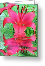Reflection Of Life  Greeting Card