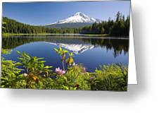 Reflection Of Mount Hood In Trillium Greeting Card by Craig Tuttle