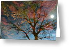 Reflection Of Self Greeting Card