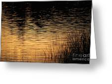 Reflection On A Sunset Greeting Card