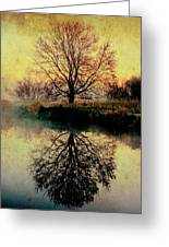 Reflection On Golden Pond Greeting Card