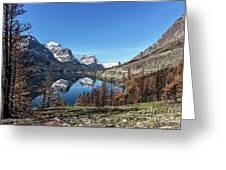 Reflection On St Mary Lake Through Burned Trees Greeting Card