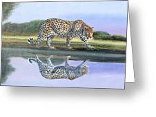 Reflection Stalk Greeting Card