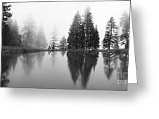 Reflections And Fog Greeting Card