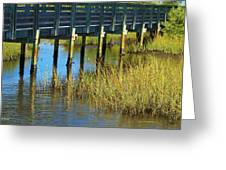Reflections And Sea Grass Greeting Card